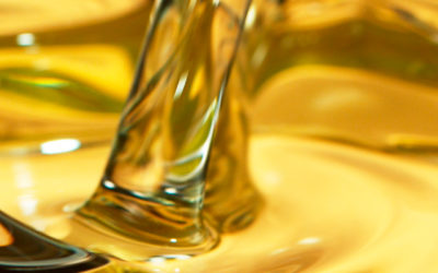 Camelina oil, the base ingredient of our products